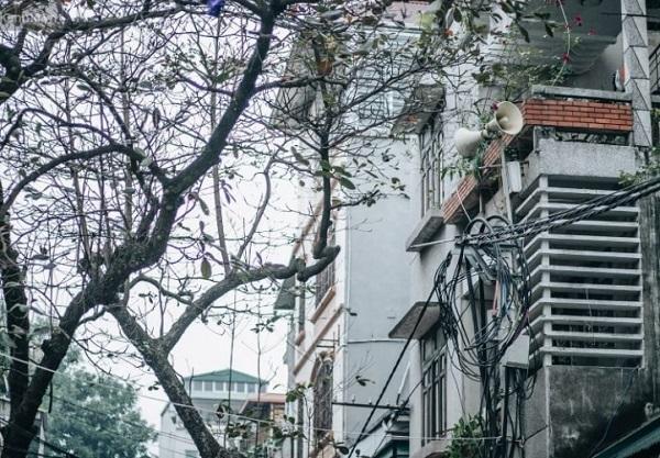 Hình ảnh loa phóng thanh tại xã, phường